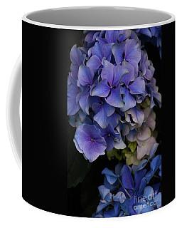 Coffee Mug featuring the photograph Hydrangea by Cindy Manero