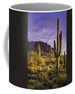 In The Desert Golden Hour  Coffee Mug