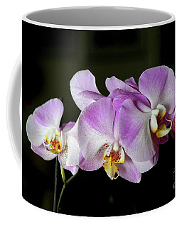 Coffee Mug featuring the photograph In The Pink by Mariarosa Rockefeller