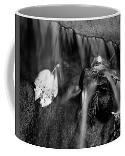Into The Stream 4 Coffee Mug