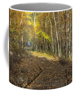Coffee Mug featuring the photograph Into The Woods by Jonathan Nguyen