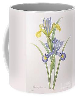 Iris Xiphium Coffee Mug