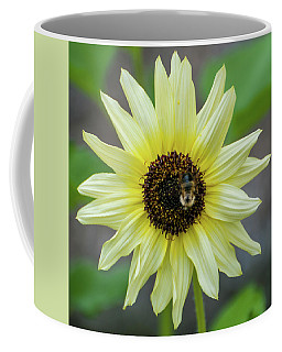 Italian Sunflower Coffee Mug by Brenda Jacobs