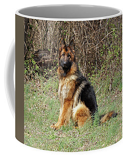 Coffee Mug featuring the photograph Jessy by Sandy Keeton