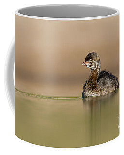 Juvie Pied Billed Grebe Coffee Mug