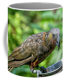 Kaka Coffee Mug