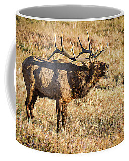 King Of The Valley Coffee Mug