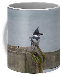 Coffee Mug featuring the photograph Kingfisher In Bellingham by Karen Molenaar Terrell