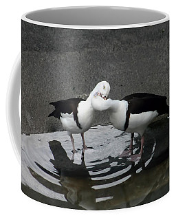 Kissing Ducks Coffee Mug