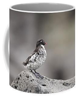 Least Auklet Coffee Mug