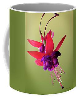 Life Is Reaching Out Coffee Mug