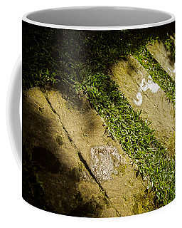 Light Footsteps In The Garden Coffee Mug