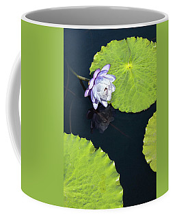 Coffee Mug featuring the photograph Lily Love by Suzanne Gaff