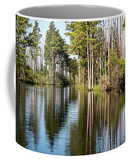 Coffee Mug featuring the photograph Lines And Reflection by Sally Sperry