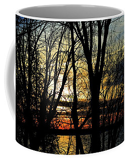 Coffee Mug featuring the photograph Looking Through The Trees  by Lyle Crump