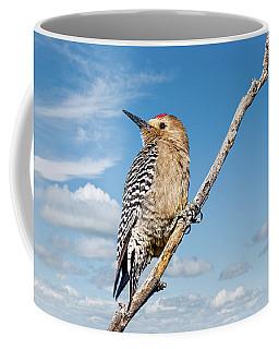 Male Gila Woodpecker Coffee Mug