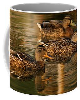 Mallards Swimming In The Water At Magic Hour Coffee Mug