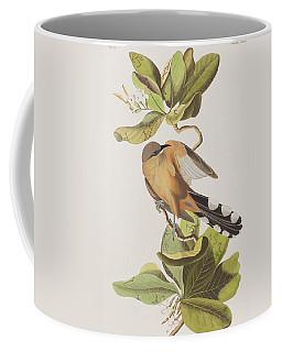 Mangrove Cuckoo Coffee Mug