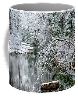 Coffee Mug featuring the photograph March Snow Cranberry River by Thomas R Fletcher