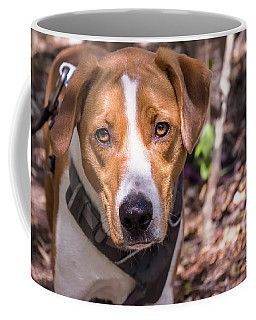Mikey Coffee Mug
