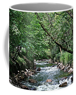 Minnehaha Creek Coffee Mug