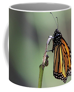 Monarch Butterfly Stony Brook New York Coffee Mug