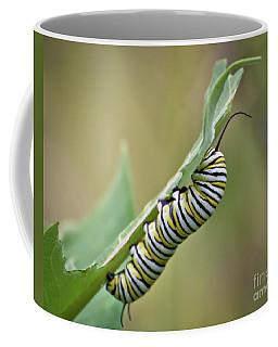 Coffee Mug featuring the photograph Monarch Caterpillar by Kerri Farley