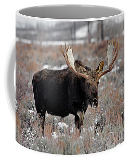 Coffee Mug featuring the photograph Moose by Ronnie and Frances Howard