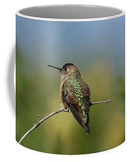 Morning Serenity 2 Coffee Mug