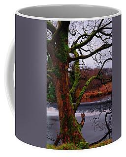 Mossy Tree Leaning Over The Smooth River Wharfe Coffee Mug
