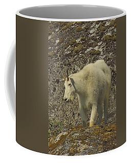 Mountain Goat Ewe Coffee Mug