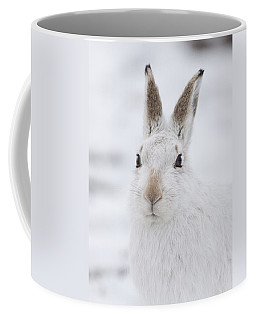 Mountain Hare In The Snow - Lepus Timidus  #1 Coffee Mug