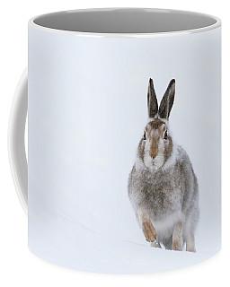 Coffee Mug featuring the photograph Mountain Hare - Scotland by Karen Van Der Zijden