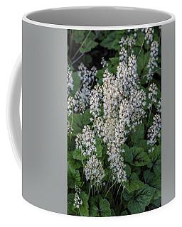Msu Spring 12 Coffee Mug