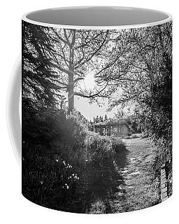 Msu Spring 14 Coffee Mug