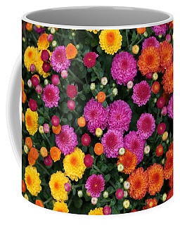 Multi Colored Mums Coffee Mug by Living Color Photography Lorraine Lynch