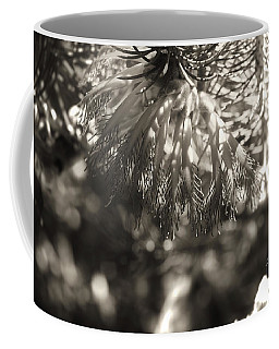 Mundaring Weir V Coffee Mug