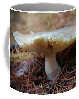 Coffee Mug featuring the photograph Mushroom by Lilia D