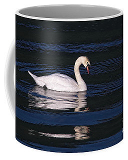 Coffee Mug featuring the photograph Mute Swan  by Sharon Talson