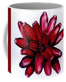 Neoregelia 'christmas Cheer' Coffee Mug