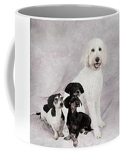 Fur Friends Coffee Mug