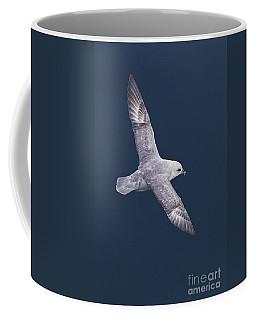 Northern Fulmar Coffee Mug