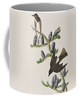 Olive Sided Flycatcher Coffee Mug