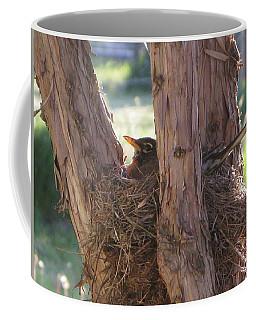 On The Nest Coffee Mug