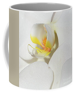 Coffee Mug featuring the photograph Orchid Central by Cindy Manero