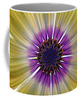 Osteospermum The Cape Daisy Coffee Mug