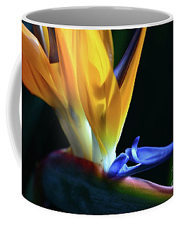 Coffee Mug featuring the photograph Paradise Found by Cindy Manero