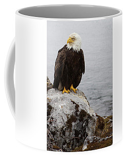 Coffee Mug featuring the photograph Perched Bald Eagle by Brandy Little