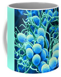Microscopy Coffee Mugs