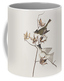 Pewit Flycatcher Coffee Mug